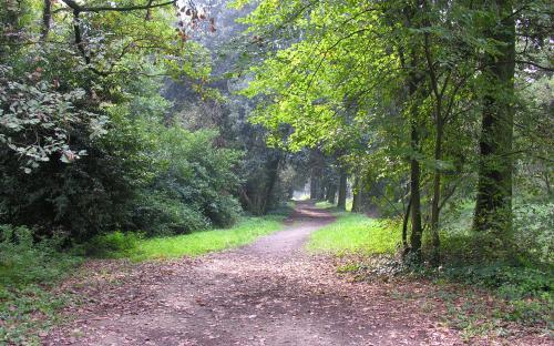 Bosco delle Pavoniere-Cascine di Tavola